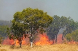 alight;Australasia;Australia;burn;burned;burning;burnoff;burnoffs;burns;burnt;bush-fire;bush-fires;danger;dangerous;destruction;fire;fires;flamable;flame;flames;flaming;grass-fire;grass-fires;heat;hot;N.T.;Northern-Territory;NT;on-fire;orange;Timber-Creek;Top-End;Victoria-Highway;wild-fire;wild-fires;wildfire;wildfires
