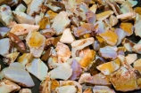 Australasian;Australia;Australian;Australian-Outback;Coober-Pedy;gem;gems;gemstone;gemstones;natural-opal;natural-opals;Old-Timers-Mine;Old-Timers-Opal-Mine;opal;opals;Outback;precious-stone;precious-stones;raw;raw-opal;raw-opals;red-centre;S.A.;SA;semi_precious-stone;semi_precious-stones;South-Australia;uncut;valuable