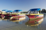 australasia;Australia;australian;boat;boats;coast;coastal;hire-boat;Hire-Boats;inlet;inlets;Maroochy-River;Maroochydore;queensland;rental;rivers;Sunshine-Coast;swan;swan-boat-hire