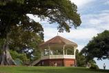 Australasia;Australia;Band-Rotunda;Band-Rotundas;Band-stand;Band-stands;Band_stand;Band_stands;Bandstand;Bandstands;fig-tree;fig-trees;N.S.W.;New-South-Wales;NSW;Observatory-Hill;Observatory-Park;park;parks;Rotunda;Rotundas;Sydney
