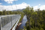 Australasian;Australia;Australian;beautiful;beauty;bush;Cantilever;elevated-walkway;elevated-walkways;endemic;forest;Forestry-Tasmania;forests;green;high;Huon-River;Island-of-Tasmania;native;native-bush;natural;nature;people;person;scene;scenic;State-of-Tasmania;Tahune-Air-Walk;Tahune-AirWalk;Tahune-Forest-Airwalk;Tahune-Forest-Reserve;Tahure-Forest-Air-Walk;Tas;Tasmania;tourism;tourist;tourists;tree;trees;wood;woods