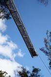 Australasian;Australia;Australian;elevated-walkway;elevated-walkways;Forestry-Tasmania;high;Island-of-Tasmania;State-of-Tasmania;Tahune-Air-Walk;Tahune-AirWalk;Tahune-Forest-Airwalk;Tahune-Forest-Reserve;Tahure-Forest-Air-Walk;Tas;Tasmania