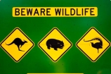 australasia;australia;australian;beware-wildlife;bird;birds;kangaroo;Kangaroo-Warning-Sign;kangaroos;Lasiorhinus-latrifrons;lyre-bird;lyre-birds;lyre_bird;lyre_birds;lyrebird;lyrebirds;mount-buffalo-n.p.;mount-buffalo-national-park;mount-buffalo-np;mt-buffalo-n.p.;mt-buffalo-national-park;mt-buffalo-np;mt.-buffalo-n.p.;mt.-buffalo-national-park;mt.-buffalo-np;natural;nature;Road;road-sign;road-signs;road_sign;road_signs;roads;roadsign;roadsigns;sign;signs;symbol;symbols;tranportation;transport;travel;victoria;warn;warning;wildlife;wombat;wombats;yellow-black