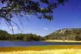 alpine;australasia;australia;australian;australian-alps;eucalypt;eucalypts;eucalyptus;eucalytis;gum;gum-tree;gum-trees;gums;lake;lake-catani;lakes;mount-buffalo-n.p.;mount-buffalo-national-park;mount-buffalo-np;mt-buffalo-n.p.;mt-buffalo-national-park;mt-buffalo-np;mt.-buffalo-n.p.;mt.-buffalo-national-park;mt.-buffalo-np;tree;trees;victoria;victorian-alps