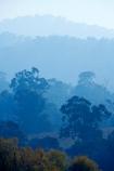 air-pollution;air-polutants;air-quality;airshed;airsheds;atmosphere;Australia;autuminal;autumn;autumnal;bad-air-quality;Berringama;burnoff;burnoffs;bush-fire;bush-fires;bush_fire;bush_fires;bushfire;bushfires;carbon-footprint;Corryong;deciduous;Eastern-Victoria;emissions;emit;emsision;environment;eucalypt;eucalypts;eucalyptus;eucalytis;fall;global-warming;greenhouse-gas;greenhouse-gases;gum;gum-tree;gum-trees;gums;haze;hazey;hazy;high-pollution-day;high-pollution-days;hill;hills;Mount-Burrowa;Mt-Burrowa;Mt.-Burrowa;pollute;polluting;pollution;poor-air-quality;season;seasonal;seasons;Shelley;smog;smoggy;smoke;smokey;smoky;Tallangatta;tree;trees;VIC;Victoria