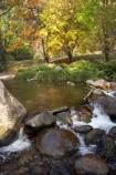 Australia;autuminal;autumn;autumn-colour;autumn-colours;autumnal;Bogong;Bogong-Village;brook;brooks;color;colors;colour;colours;creek;creeks;deciduous;East-Victoria;Eastern-Victoria;fall;flow;leaf;leaves;maple;maples;Mount-Beauty;Mt-Beauty;Mt.-Beauty;Rocky-Valley-Creek;season;seasonal;seasons;stream;streams;tree;trees;VIC;Victoria;Victorian-Alps;water;wet;yellow