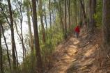 Alpine-N.P.;Alpine-National-Park;Alpine-NP;Australia;Bogong;Bogong-Village;East-Victoria;Eastern-Victoria;eucalypt;eucalypts;eucalyptus;eucalytis;gum;gum-tree;gum-trees;gums;hike;hiker;hikers;hiking;hiking-track;hiking-tracks;Junction-Dam;lake;Lake-Guy;lakes;Mount-Beauty;Mt-Beauty;Mt.-Beauty;path;paths;people;person;track;tracks;tramp;tramper;trampers;tramping;tramping-tack;tramping-tacks;tree;trees;trek;treker;trekers;treking;trekker;trekkers;trekking;VIC;Victoria;Victorian-Alps;walk;walker;walkers;walking;walking-track;walking-tracks
