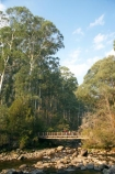 Australia;Bogong;Bogong-Village;bridge;bridges;brook;brooks;child;children;creek;creeks;East-Victoria;Eastern-Victoria;eucalypt;eucalypts;eucalyptus;eucalytis;flow;foot-bridge;foot-bridges;footbridge;footbridges;gum;gum-tree;gum-trees;gums;hike;hiker;hikers;hiking;hiking-track;hiking-tracks;kid;kids;mother;Mount-Beauty;Mt-Beauty;Mt.-Beauty;parent;pedestrian-bridge;pedestrian-bridges;people;person;Rocky-Valley-Creek;stream;streams;track;tracks;tramp;tramper;trampers;tramping;tramping-tack;tramping-tracks;tree;trees;trek;treker;trekers;treking;trekker;trekkers;trekking;VIC;Victoria;Victorian-Alps;walk;walker;walkers;walking;walking-track;walking-tracks;water;wet;woman