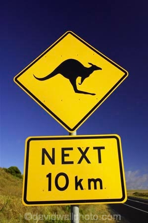 12-Apostles;australasia;Australia;australian;Great-Ocean-Road;kangaroo;Kangaroo-Warning-Sign;kangaroos;natural;nature;next-10-km;next-ten-km;Road;road-sign;road-signs;road_sign;road_signs;roads;roadsign;roadsigns;sign;signs;symbol;symbols;tranportation;transport;travel;Victoria;warn;warning;wildlife;yellow-black