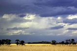 agricultural;agriculture;australasia;australia;australian;black;cloud;cloudy;country;countryside;crop;crops;dark;farm;farming;farmland;farms;field;fields;geelong;gray;grey;horticulture;meadow;meadows;paddock;paddocks;pasture;pastures;rural;skies;sky;storm;storms;stormy;thunder;thunderstorm;thunderstorms;torquay;victoria;weather