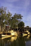 Adelaide;Alexander-Arbuthnot;australasia;Australia;australian;boat;boats;Echuca;eucalypts;eucalytpis;excursion;gum-tree;gum-trees;gums;historic;historical;history;jetties;jetty;moama;Murray-River;n.s.w.;New-South-Wales;nsw;old;paddle;paddle-boat;paddle-boats;paddle-steam-boat;paddle-steam-boats;paddle-steamer;paddle-steamers;paddle_boat;paddle_boats;paddle_steamer;paddle_steamers;paddleboat;paddleboats;paddlesteamer;paddlesteamers;passenger;passengers;pier;piers;port-of-echuca;reflection;reflections;river;River-boat;river-boats;River_boat;river_boats;Riverboat;riverboats;rivers;steam-boat;steam-boats;steam_boat;steam_boats;steamboat;steamboats;steamer;steamers;tourism;tourist;tourists;travel;vessel;vessels;Victoria;watercraft;waterside;wharf;wharfes;wharves