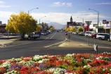 ararat;australasia;australia;australian;autumn;bloom;blooms;color;colors;colour;colours;country-town;country-towns;fall;flower;flower-garden;flower-gardens;flowers;garden;gardens;lilac;main-street;pink;purple;road;roads;roundabout;roundabouts;rural-town;rural-towns;steeple;steeples;street;streets;town;towns;victoria;violet;white;wide-street