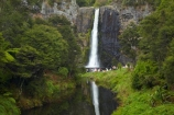 Auckland;cascade;cascades;fall;falls;Hunua-Falls;Hunua-Falls-Regional-Park;Hunua-Ranges;Hunua-Ranges-Regional-Park;N.Z.;natural;nature;New-Zealand;North-Is.;North-Island;Nth-Is;NZ;scene;scenic;water;water-fall;water-falls;waterfall;waterfalls;wet