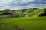 Catlins, South Otago