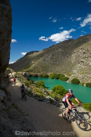 bicycle;bicycles;bike;bike-track;bike-tracks;bike-trail;bike-trails;bikes;biking;Central-Otago;Clutha-River;cycle;cycle-track;cycle-tracks;cycle-trail;cycle-trails;cycler;cyclers;cycles;cycling;cyclist;cyclists;families;family;lake;Lake-Roxburgh;lakes;leisure;mountain;mountain-bike;mountain-biker;mountain-bikers;mountain-bikes;mtn-bike;mtn-biker;mtn-bikers;mtn-bikes;N.Z.;New-Zealand;NZ;Otago;people;person;push-bike;push-bikes;push_bike;push_bikes;pushbike;pushbikes;recreation;river;rivers;Roxburgh-Cycle-Track;Roxburgh-Cycle-Trail;Roxburgh-Gorge;Roxburgh-Gorge-Cycle-and-Walking-Trail;Roxburgh-Gorge-Cycle-Track;Roxburgh-Gorge-Cycle-Trail;Roxburgh-Gorge-Track;Roxburgh-Gorge-Trail;Roxburgh-Gorge-Walking-and-Cycle-Trail;S.I.;SI;South-Is;South-Island;Sth-is;tourism;tourist;tourists