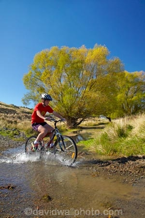 autuminal;autumn;autumn-colour;autumn-colours;autumnal;bicycle;bicycles;bike;bike-track;bike-tracks;bike-trail;bike-trails;bikes;brook;brooks;Central-Otago;Central-Otago-Cycle-Trail;Central-Otago-Rail-Trail;color;colors;colour;colours;creek;creeks;cycle;cycle-track;cycle-tracks;cycle-trail;cycle-trails;cycler;cyclers;cycles;cycleway;cycleways;cyclist;cyclists;deciduous;excercise;excercising;fall;gold;golden;Ida-Burn;Ida-Burn-Creek;Ida-Burn-Stream;Idaburn;Idaburn-Creek;Idaburn-Stream;Idaburn-Valley;leaf;leaves;model-released;mountain-bike;mountain-biker;mountain-bikers;mountain-bikes;MR;mtn-bike;mtn-biker;mtn-bikers;mtn-bikes;N.Z.;New-Zealand;NZ;Otago;Otago-Central-Cycle-Trail;Otago-Central-Rail-Trail;Otago-Rail-Trail;people;person;push-bike;push-bikes;push_bike;push_bikes;pushbike;pushbikes;rail-trail;rail-trails;S.I.;season;seasonal;seasons;SI;South-Is;South-Island;splash;splashing;Sth-Is;stream;streams;teenager;teenagers;tree;trees;yellow