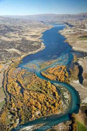 s-bend;aerial;aerial-photo;aerial-photograph;aerial-photographs;aerial-photography;aerial-photos;aerial-view;aerial-views;aerials;autuminal;autumn;autumn-colour;autumn-colours;Autumn-Willow-Trees;autumnal;bend;bends;braided-river;braided-rivers;Central-Otago;Clutha-River;Clutha-River-Delta;color;colors;colour;colours;creek;creeks;deciduous;delta;deltas;fall;golden;hydro-lake;hydro-lakes;lake;Lake-Dunstan;lakes;meander;meandering;meandering-river;meandering-rivers;N.Z.;New-Zealand;NZ;Otago;river;river-delta;river-deltas;rivers;s-bend;S.I.;season;seasonal;seasons;SI;South-Is.;South-Island;stream;streams;tree;trees;Upper-Clutha;water;willow;willow-tree;willow-trees;willows;yellow