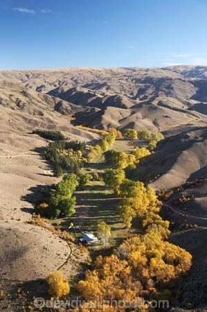 aerial;aerial-photo;aerial-photograph;aerial-photographs;aerial-photography;aerial-photos;aerial-view;aerial-views;aerials;agricultural;agriculture;arid;autuminal;autumn;autumn-colour;autumn-colours;autumnal;back-country;backcountry;Bannockburn;barren;Central-Otago;color;colors;colour;colours;contrast;contrasts;country;countryside;crop;crops;deciduous;drought;dry;fall;farm;farming;farmland;farms;field;fields;Hawksburn;high-altitude;high-country;highcountry;highlands;horticulture;irrigation;meadow;meadows;N.Z.;New-Zealand;NZ;oasis;Otago;paddock;paddocks;pasture;pastures;remote;remoteness;rural;S.I.;season;seasonal;seasons;semi_arid;SI;South-Is.;South-Island;tree;trees;uplands;valley;valleys;willow;willow-tree;willow-trees;willows