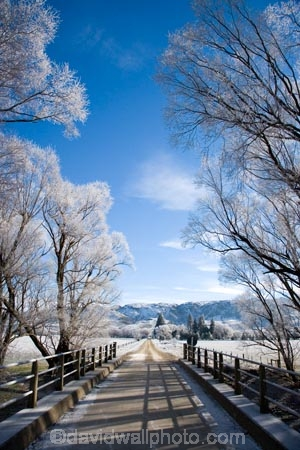 agricultural;agriculture;beautiful;bridge;bridges;calm;calmness;Central-Otago;clean;clear;cold;Coldness;Color;Colour;country;countryside;Daytime;dusty;Exterior;farm;farming;farmland;farms;field;fields;freeze;freezing;freezing-fog;frost;Frosted;frosty;gravel-road;gravel-roads;high-country;hoar-frost;hoar-frosts;Hoarfrost;hoarfrosts;ice;ice-crystals;icy;icy-road;icy-roads;Ida-Valley;idyllic;Landscape;Landscapes;Maniototo;meadow;meadows;metal-road;metal-roads;metalled-road;metalled-roads;N.Z.;natural;Nature;new-zealand;NZ;Otago;Oturehua;Outdoor;Outdoors;Outside;paddock;paddocks;pasture;pastures;peaceful;Peacefulness;phenomena;phenomenon;pure;Quiet;Quietness;rime;rime-ice;road;road-bridge;road-bridges;roads;rural;S.I.;Scenic;Scenics;Season;Seasons;SI;silence;slippery-road;slippery-roads;south-island;spectacular;stunning;traffic-bridge;traffic-bridges;tranquil;tranquility;tree;trees;view;water;weather;White;willow;willow-tree;willow-trees;willows;winter;winter-driving;winter-driving-conditions;winter-road;winter-roads;Wintertime;wintery;wintry
