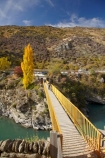 autuminal;autumn;autumn-colour;autumn-colours;autumnal;bridge;bridges;Central-Otago;color;colors;colour;colours;deciduous;fall;foot-bridge;foot-bridges;footbridge;footbridges;gold-mines;gold-mining;Goldfields;Goldfields-Mining-Centre;Goldfields-tourist-attraction;Kawarau-Gorge;Kawarau-River;leaf;leaves;N.Z.;New-Zealand;NZ;Otago;pedestrian-bridge;pedestrian-bridges;polars;poplar-tree;poplar-trees;S.I.;season;seasonal;seasons;SI;South-Is;South-Island;tree;trees