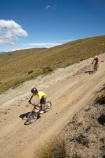 2525;4wd-track;4wd-tracks;adventure;adventure-sport;adventure-sports;adventurous;back-country;backcountry;bicycle;bicycles;bike;bikers;bikes;boy;boys;carrick;Carrick-Range;Carrick-Town-Track;Carrick-Track;Carricktown-Track;central;Central-Otago;child;children;countryside;cross-country;cycle;cycler;cyclers;cycles;cyclist;cyclists;dirt-track;doqwnhill;downhills;dusty;fast;four-wheel-drive-track;four-wheel-drive-tracks;girl;girls;gravel-road;gravel-roads;high-altitude;high-country;Highcountry;highlands;island;metal-road;metal-roads;metalled-road;metalled-roads;mountain;mountain-bike;mountain-biker;mountain-bikers;mountain-bikes;mtn-bike;mtn-biker;mtn-bikers;mtn-bikes;N.Z.;new;new-zealand;NZ;otago;outdoors;people;person;push-bike;push-bikes;pushbike;push_bike;pushbikes;push_bikes;range;recreation;remote;remoteness;road;roads;rural;S.I.;SI;south;South-Is;South-Island;sport;Sth-Is;track;tracks;tussock;tussock-grass;tussocks;upland;uplands;young;zealand