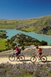 bicycle;bicycles;bike;bike-track;bike-tracks;bike-trail;bike-trails;bikes;Central-Otago;child;children;cycle;cycle-track;cycle-tracks;cycle-trail;cycle-trails;cycler;cyclers;cycles;cyclist;cyclists;families;family;lake;Lake-Roxburgh;lakes;mountain-bike;mountain-biker;mountain-bikers;mountain-bikes;mtn-bike;mtn-biker;mtn-bikers;mtn-bikes;N.Z.;New-Zealand;NZ;Otago;people;person;push-bike;push-bikes;push_bike;push_bikes;pushbike;pushbikes;Roxburgh;Roxburgh-Cycle-Track;Roxburgh-Cycle-Trail;Roxburgh-Gorge;Roxburgh-Gorge-Cycle-and-Walking-Trail;Roxburgh-Gorge-Cycle-Track;Roxburgh-Gorge-Cycle-Trail;Roxburgh-Gorge-Track;Roxburgh-Gorge-Trail;Roxburgh-Gorge-Walking-and-Cycle-Trail;S.I.;season;seasonal;seasons;SI;South-Is;South-Island;spring;spring-time;Sth-is;thyme;thyme-in-flower;tourism;tourist;tourists;violet;wild-thyme