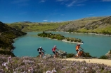 bicycle;bicycles;bike;bike-track;bike-tracks;bike-trail;bike-trails;bikes;Central-Otago;child;children;cycle;cycle-track;cycle-tracks;cycle-trail;cycle-trails;cycler;cyclers;cycles;cyclist;cyclists;families;family;island;islands;lake;Lake-Roxburgh;lakes;Long-Is;Long-Island;mountain-bike;mountain-biker;mountain-bikers;mountain-bikes;mtn-bike;mtn-biker;mtn-bikers;mtn-bikes;N.Z.;New-Zealand;NZ;Otago;people;person;push-bike;push-bikes;push_bike;push_bikes;pushbike;pushbikes;Roxburgh;Roxburgh-Cycle-Track;Roxburgh-Cycle-Trail;Roxburgh-Gorge;Roxburgh-Gorge-Cycle-and-Walking-Trail;Roxburgh-Gorge-Cycle-Track;Roxburgh-Gorge-Cycle-Trail;Roxburgh-Gorge-Track;Roxburgh-Gorge-Trail;Roxburgh-Gorge-Walking-and-Cycle-Trail;S.I.;season;seasonal;seasons;SI;South-Is;South-Island;spring;spring-time;Sth-is;thyme;thyme-in-flower;tourism;tourist;tourists;violet;wild-thyme
