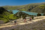 bicycle;bicycles;bike;bike-track;bike-tracks;bike-trail;bike-trails;bikes;Central-Otago;child;children;cycle;cycle-track;cycle-tracks;cycle-trail;cycle-trails;cycler;cyclers;cycles;cyclist;cyclists;families;family;hairpin-bend;hairpin-bends;hairpin-corner;hairpin-corners;lake;Lake-Roxburgh;lakes;mountain-bike;mountain-biker;mountain-bikers;mountain-bikes;mtn-bike;mtn-biker;mtn-bikers;mtn-bikes;N.Z.;New-Zealand;NZ;Otago;people;person;push-bike;push-bikes;push_bike;push_bikes;pushbike;pushbikes;Roxburgh;Roxburgh-Cycle-Track;Roxburgh-Cycle-Trail;Roxburgh-Gorge;Roxburgh-Gorge-Cycle-and-Walking-Trail;Roxburgh-Gorge-Cycle-Track;Roxburgh-Gorge-Cycle-Trail;Roxburgh-Gorge-Track;Roxburgh-Gorge-Trail;Roxburgh-Gorge-Walking-and-Cycle-Trail;S.I.;season;seasonal;seasons;SI;South-Is;South-Island;spring;spring-time;steep;Sth-is;switchback;switchback-road;switchback-roads;switchbacks;thyme;thyme-in-flower;tourism;tourist;tourists;violet;wild-thyme;zig-zag;zig-zag-road;zig-zag-roads;zig-zags;zig_zag;zig_zag-road;zig_zag-roads;zig_zags;zigzag;zigzag-road;zigzag-roads;zigzags