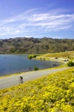 athelete;atheletes;bicycle;bicycles;bike;bikes;blue;californian-poppies;californian-poppy;Central-Otago;Cromwell;cycle;cycles;cyclist;cyclists;Eschscholzia-califorica;flower;flowers;lake-dunstan;multi-sport;multi_sport;multisport;New-Zealand;push-bike;push-bikes;push_bike;push_bikes;pushbike;pushbikes;race;racers;racing;season;seasonal;seasons;South-Island;sport;sports;summer;summertime;triathalon;triathalons;wild-flower;wild-flowers;wild_flower;wild_flowers;Wildflower;wildflowers;yellow