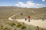 4wd-track;4wd-tracks;adventure;adventure-sport;adventure-sports;adventurous;back-country;backcountry;bicycle;bicycles;bike;bikes;Carrick-Range;Carrick-Town-Track;Carrick-Track;Carricktown-Track;Central-Otago;countryside;cross-country;cycle;cycler;cyclers;cycles;cyclist;cyclists;dirt-track;dusty;four-wheel-drive-track;four-wheel-drive-tracks;gravel-road;gravel-roads;high-altitude;high-country;highcountry;highlands;metal-road;metal-roads;metalled-road;metalled-roads;mountain-bike;mountain-biker;mountain-bikers;mountain-bikes;mtn-bike;mtn-biker;mtn-bikers;mtn-bikes;N.Z.;New-Zealand;NZ;Otago;outdoors;push-bike;push-bikes;push_bike;push_bikes;pushbike;pushbikes;remote;remoteness;road;roads;rural;S.I.;SI;South-Island;sport;track;tracks;tussock;tussock-grass;tussocks;uplands