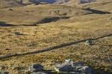 4wd-track;4wd-tracks;back-country;backcountry;Carrick-Range;Carrick-Town-Track;Carrick-Track;Carricktown-Track;Central-Otago;countryside;cross-country-bike;crosscountry-bike;dirt-bike;dirt-bikes;dirt-track;dirtbike;dirtbikes;duffers-saddle;dusty;Enduro-Bike;Enduro-Bikes;four-wheel-drive-track;four-wheel-drive-tracks;gravel-road;gravel-roads;high-altitude;high-country;highcountry;highlands;kawasaki;Kawasaki-KLX400;KLX400;metal-road;metal-roads;metalled-road;metalled-roads;motor-bike;motor-bikes;motorbike;motorbikes;motorcycle;motorcycles;mountain;n.z.;new-zealand;nz;off-road;Otago;range;ranges;remote;remoteness;road;roads;rural;S.I.;SI;South-Island;track;tracks;trail-bike;trail-bikes;trailbike;trailbikes;tussock;tussock-grass;tussocks;uplands
