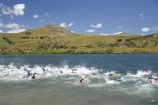freestyle;Lake-Hayes;Lake-Hayes-Triathalon;multi-sport;multi_sport;multisport;New-Zealand;Otago;Queenstown;race;racers;races;racing;South-Island;splash;splashing;sport;sports;sportsman;sportsmen;sportswoman;sportswomen;swim;swimmer;Swimmers;Triathalon;triathalons;triathlon;triathlons