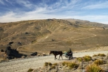 back-country;backcountry;Carrick-Range;cart;carts;cartwheel;cartwheels;cavalcade;Central-Otago;Central-Otago-Cavalcade;cow-boy;cow-boys;cowboy;cowboys;Duffers-Saddle;equestrian;high-country;Highcountry;highland;highlands;horse;horse-rider;horse-riders;horseback;horseman;horsemen;horses;N.Z.;Nevis-Road;Nevis-Valley;New-Zealand;NZ;pony-cart;rider;riders;S.I.;SI;South-Island;spoked-wheel;spoked-wheels;stockman;stockmen;waggon;waggons;wagon;wagon-wheel;wagon-wheels;wagons;wheel;wheels