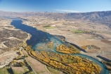aerial;aerial-photo;aerial-photograph;aerial-photographs;aerial-photography;aerial-photos;aerial-view;aerial-views;aerials;agricultural;agriculture;arid;autuminal;autumn;autumn-colour;autumn-colours;Autumn-Willow-Trees;autumnal;braided-river;braided-rivers;Central-Otago;Clutha-River;Clutha-River-Delta;color;colors;colour;colours;country;countryside;creek;creeks;crop;crops;deciduous;delta;deltas;drought;dry;fall;farm;farming;farmland;farms;field;fields;golden;highway-8;highway-eight;horticulture;hydro-lake;hydro-lakes;lake;Lake-Dunstan;lakes;meadow;meadows;meander;meandering;meandering-river;meandering-rivers;N.Z.;New-Zealand;NZ;Otago;paddock;paddocks;pasture;pastures;Pisa-Range;river;river-delta;river-deltas;rivers;rural;S.I.;season;seasonal;seasons;SI;South-Is.;South-Island;State-highway-8;State-Highway-Eight;stream;streams;tree;trees;Upper-Clutha;water;willow;willow-tree;willow-trees;willows;yellow