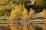autuminal;autumn;autumn-colour;autumn-colours;autumnal;Bannockburn;Bannockburn-Inlet;bicycle;bicycles;bike;bikes;boy;boys;calm;Central-Otago;child;children;color;colors;colour;colours;cycle;cycler;cyclers;cycles;cyclist;cyclists;deciduous;fall;female;golden;Kawarau-Arm;kid;kids;lake;Lake-Dunstan;lakes;little-boy;little-boys;model-release;model-released;mother;mother-and-son;mothers;mountain-bike;mountain-biker;mountain-bikers;mountain-bikes;mtn-bike;mtn-biker;mtn-bikers;mtn-bikes;N.Z.;New-Zealand;NZ;Otago;outdoor;outdoors;people;person;placid;push-bike;push-bikes;push_bike;push_bikes;pushbike;pushbikes;quiet;recreation;reflection;reflections;S.I.;season;seasonal;seasons;serene;SI;smooth;son;sons;South-Is.;South-Island;still;tranquil;tree;trees;water;willow;willow-tree;willow-trees;willows;woman;yellow