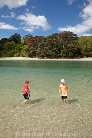beach;beaches;boy;boys;brother;brothers;child;children;coast;coastal;coastline;Cooks-Bay;Cooks-Beach;Cooks-Bay;Cooks-Beach;Coromandel;Coromandel-Peninsula;estuaries;estuary;girl;girls;inlet;inlets;kid;kids;lagoon;lagoons;little-boy;little-boys;little-girl;little-girls;N.I.;N.Z.;New-Zealand;NI;North-Is;North-Is.;North-Island;NZ;ocean;oceans;Purangi-Estuary;sand;sandy;sea;seas;shore;shoreline;sibling;siblings;sister;sisters;summer;tidal;tide;Waikato;water