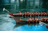 boat;boats;cultural;culture;event;festival;historical;maori;paddle