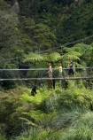 bridge;bridges;Coromandel;Coromandel-Peninsula;foot-bridge;foot-bridges;footbridge;footbridges;hike;hikes;hiking;hiking-track;hiking-tracks;Karangahake-Gorge;Karangahake-Gorge-Historic-Walkway;Karangahake-Gorge-Track;Karangahake-Gorge-Walk;Karangahake-Gorge-Walkway;N.I.;N.Z.;New-Zealand;NI;North-Is;North-Is.;North-Island;NZ;Paeroa;pedestrian-bridge;pedestrian-bridges;river;rivers;rope-bridge;rope-bridges;suspension-bridge;suspension-bridges;swing-bridge;swing-bridges;Swingbridge;track;tracks;tramp;tramping;tramps;Waikato;Waitawheta-River;walk;walking;walking-track;walking-tracks;walks;wire-bridge;wire-bridges