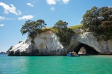 beach;beaches;bluff;bluffs;boat;boat-tour;boat-tours;boat-trip;boat-trips;boats;Cathedral-Cove;Cathedral-Cove-recreation-reserve;cave;cavern;caverns;caves;cliff;cliffs;coast;coastal;coastline;coastlines;coasts;Coromandel;Coromandel-Peninsula;cruise;cruises;foreshore;geological;geology;Glass-Bottom-Boat;Glass-Bottom-Boats;Glass-Bottomed-Boat;Glass-Bottomed-Boats;grotto;grottos;Hahei;launch;launches;littoral-cave;littoral-caves;marine-reserve;marine-reserves;Mercury-Bay;Mercury-Bay-Seafaris;N.I.;N.Z.;New-Zealand;NI;North-Is;North-Is.;North-Island;NZ;ocean;oceans;pleasure-boat;pleasure-boats;roch-arches;rock;rock-arch;rock-formation;rock-formations;rocks;sand;sandy;sea;sea-cave;sea-caves;seas;shore;shoreline;shorelines;shores;speed-boat;speed-boats;stone;Te-Whanganui-A-Hei-Marine-Reserve;Te-Whanganui_A_Hei-Marine-Reserve;tour-boat;tour-boats;tourism;tourist;tourist-boat;tourist-boats;Waikato;water