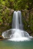 309-Rd;309-Road;cascade;cascades;Coromandel;Coromandel-Peninsula;creek;creeks;falls;N.I.;N.Z.;natural;nature;New-Zealand;NI;North-Is;North-Is.;North-Island;NZ;scene;scenic;stream;streams;Waiau;Waiau-Falls;Waiau-Falls-Scenic-Reserve.;Waiau-Waterfall;Waikato;water;water-fall;water-falls;waterfall;waterfalls;wet
