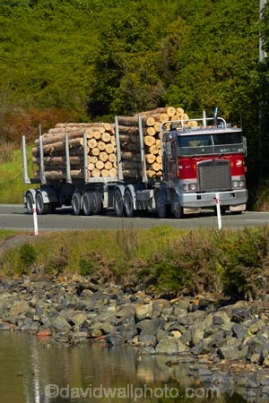 articulated-lorries;articulated-lorry;articulated-truck;articulated-trucks;bulk;Dunedin;Dunedin-Carrying-Company;export;export-logs;exporting;exports;forestry;forestry-industry;heavy-haulage;industrial;industry;Juggernaut;Juggernauts;Kenworth;Kenworths;log;log-hauler;log-haulers;log-lorries;log-lorry;log-truck;log-trucks;logging;logging-lorries;logging-lorry;logging-truck;logging-trucks;logs;lorries;lorry;lumber;N.Z.;New-Zealand;NZ;Otago;Otago-Harbour;pine;pine-tree;pine-trees;pines;pinus-radiata;Port-Chalmers;Pt-Chalmers;Ravensbourne-Rd;Ravensbourne-Road;rig;rigs;S.I.;semi;semitrailer;semitrailers;SI;South-Is;South-Is.;South-Island;St-Leonards;Sth-Is;stockpile;stockpiles;timber;timber-industry;tractor-trailer;tractor-trailers;trade;transport;transportation;tree;tree-trunk;tree-trunks;trees;truck;trucks;wood