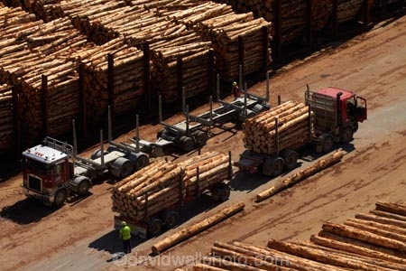 articulated-lorries;articulated-lorry;articulated-truck;articulated-trucks;bulk;dock;docks;Dunedin;export;export-logs;exporting;exports;forestry;forestry-industry;heavy-haulage;import;importing;industrial;industry;Juggernaut;Juggernauts;log;log-hauler;log-haulers;log-lorries;log-lorry;log-stack;log-stacks;log-truck;log-trucks;logging;logging-lorries;logging-lorry;logging-truck;logging-trucks;logs;lorries;lorry;lumber;N.Z.;New-Zealand;NZ;Otago;Otago-Harbour;Otago-port;pattern;patterns;pier;piers;pine;pine-tree;pine-trees;pines;pinus-radiata;port;Port-Chalmers;Port-of-Otago;Port-Otago;ports;Pt-Chalmers;quay;quays;rig;rigs;S.I.;semi;semitrailer;semitrailers;SI;South-Is;South-Is.;South-Island;Sth-Is;stockpile;stockpiles;timber;timber-industry;tractor-trailer;tractor-trailers;trade;transport;transportation;tree;tree-trunk;tree-trunks;trees;truck;trucks;waterside;wharf;wharfes;wharves;wood