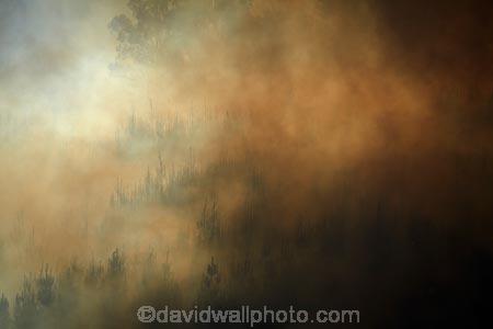 Burnside;Dunedin;fire;fires;forest-fire;forest-fires;N.Z.;New-Zealand;NZ;Otago;S.I.;SI;smoke;smokey;South-Is;South-Island;Sth-Is