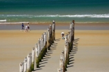 beach;beaches;coast;coastal;coastline;coastlines;coasts;Dunedin;heritage;historic;historical;history;jetties;jetty;N.Z.;New-Zealand;NZ;ocean;oceans;old;Old-Pier-Piles;Otago;pier;piers;pile;piles;S.I.;Saint-Clair-Beach;sand;sandy;sea;seas;shore;shoreline;shorelines;shores;SI;South-Is.;South-Island;St-Clair-Beach;St.-Clair-Beach;surf;walker;walkers;walking;water;waterside;wave;waves;wharf;wharfes;wharves