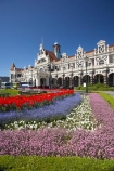 1906;architecture;bloom;blooming;blooms;building;buildings;color;colorful;colors;colour;colourful;colours;council-gardens;Dunedin;Dunedin-Railway-Station;Flemish-Renaissance-style;floral;flower;flower-bed;flower-beds;flower-garden;flower-gardens;flowers;fresh;garden;gardens;George-A-Troup;Gingerbread-George;grow;growth;heritage;historic;historic-building;historic-buildings;historical;historical-building;historical-buildings;history;N.Z.;New-Zealand;NZ;old;Otago;rail-station;rail-stations;railway;railway-station;railway-stations;railways;renew;S.I.;season;seasonal;seasons;SI;South-Is.;South-Island;spring;Spring-Flowers;springtime;tradition;traditional;train-station;train-stations;tulip;tulips