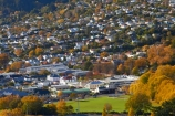 autuminal;autumn;autumn-colour;autumn-colours;autumnal;color;colors;colour;colours;communities;community;deciduous;Dunedin;fall;home;homes;house;houses;housing;leaf;leaves;N.E.V.;N.Z.;neigborhood;neigbourhood;NEV;New-Zealand;North-Dunedin;North-East-Valley;NZ;Opoho;Otago;residences;residential;residential-housing;S.I.;season;seasonal;seasons;SI;South-Is;South-Island;Sth-Is;street;streets;suburb;suburban;suburbia;suburbs;The-Gardens;tree;trees;urban