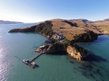 aerial;Aerial-drone;Aerial-drones;aerial-image;aerial-images;aerial-photo;aerial-photograph;aerial-photographs;aerial-photography;aerial-photos;aerial-view;aerial-views;aerials;Aquaruim;coast;coastal;coastline;coastlines;coasts;dock;docks;Drone;Drones;Dunedin;emotely-operated-aircraft;harbor;harbours;jetties;jetty;N.Z.;New-Zealand;New-Zealand-Marine-Studies-Centre;NZ;Otago;Otago-Harbor;Otago-Harbour;Otago-Peninsula;pier;piers;Portobello;Portobello-Aquarium;Portobello-Marine-Laboratory;Portobello-Peninsula;Quadcopter;Quadcopters;quay;quays;remote-piloted-aircraft-systems;remotely-piloted-aircraft;remotely-piloted-aircrafts;ROA;RPA;RPAS;S.I.;shore;shoreline;shorelines;shores;SI;South-Is;South-Island;Sth-Is;U.A.V.;UA;UAS;UAV;UAVs;Unmanned-aerial-vehicle;unmanned-aircraft;unpiloted-aerial-vehicle;unpiloted-aerial-vehicles;unpiloted-air-system;water;waterside;wharf;wharfes;wharves