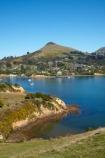 Dunedin;Harbour-Cone;Latham-Bay;N.Z.;New-Zealand;NZ;Otago;Otago-Harbor;Otago-Harbour;Otago-Peninsula;Portobello;Portobello-Peninsula;S.I.;SI;South-Is;South-Island;Sth-Is