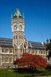 autuminal;autumn;autumn-colour;autumn-colours;autumnal;building;buildings;clock-tower;clock_tower;color;colors;colour;colours;deciduous;Dunedin;fall;heritage;historic;historic-building;historic-buildings;historical;historical-building;historical-buildings;history;leaf;leaves;N.Z.;New-Zealand;NZ;oak-leaf;oak-leaves;oak-tree;oak-trees;oaks;old;Otago;Otago-University;pin-oak;pin-oaks;registry-building;S.I.;season;seasonal;seasons;SI;South-Is;South-Is.;South-Island;Sth-Is;tradition;traditional;tree;trees;universities;university;University-of-Otago