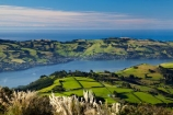 agricultural;agriculture;Austroderia;country;countryside;Dunedin;farm;farming;farmland;farms;field;fields;Martins-Hill;meadow;meadows;N.Z.;New-Zealand;NZ;Otago;Otago-Harbor;Otago-Harbour;Otago-Peninsula;paddock;paddocks;pasture;pastures;rural;shelter-belt;shelter-belts;shelter_belt;shelter_belts;shelterbelt;shelterbelts;South-Is;South-Island;Sth-Is;toetoe;toetoe-grass;toitoi;toitoi-grass;Upper-Junction;wind-break;wind-breaks;wind_break;wind_breaks;windbreak;windbreaks